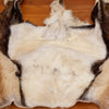 Nice Mouflon Sheep Back Skin Hide for Sale BK7023