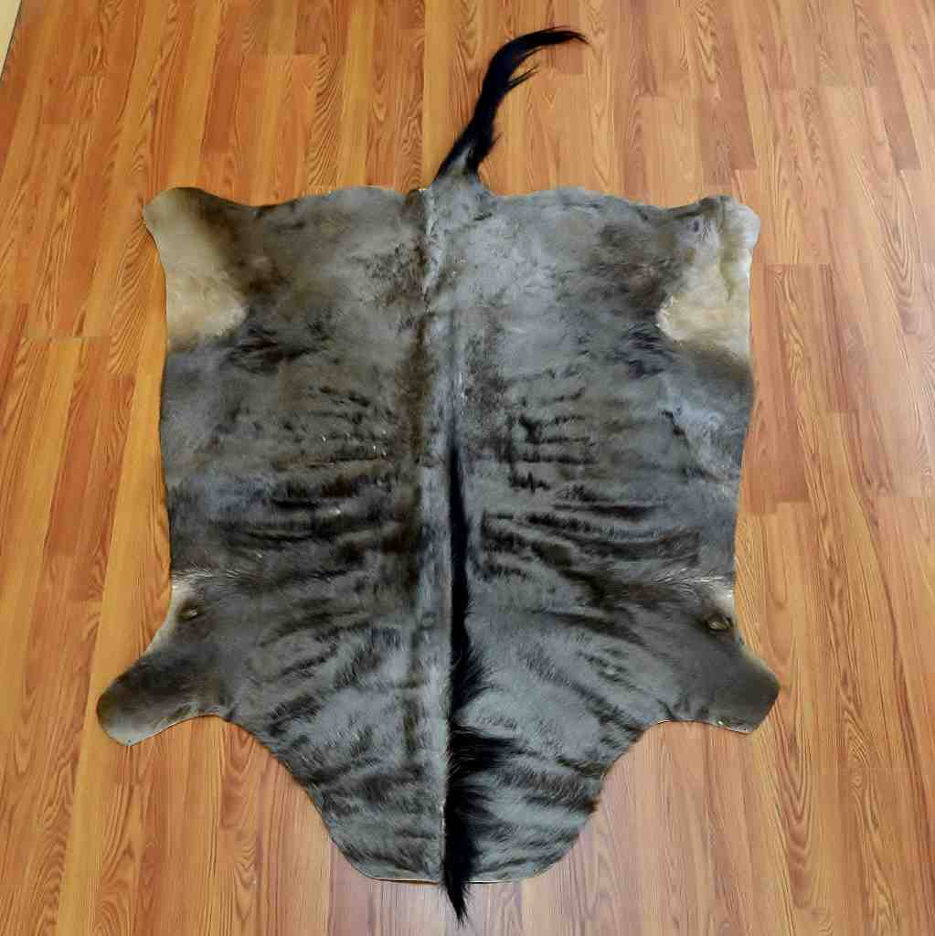 Blue Wildebeest Skin Rug Sw5089 For Sale Safariworks Taxidermy Sales