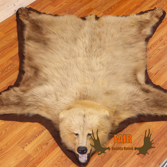 grizzly bear rug for sale safariworks decor