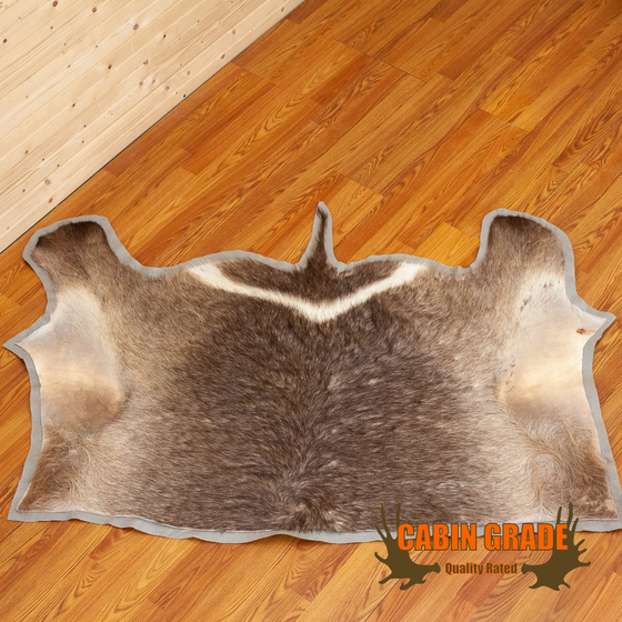 african waterbuck back skin rug for sale