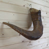 Excellent Sheep Horn CS6115