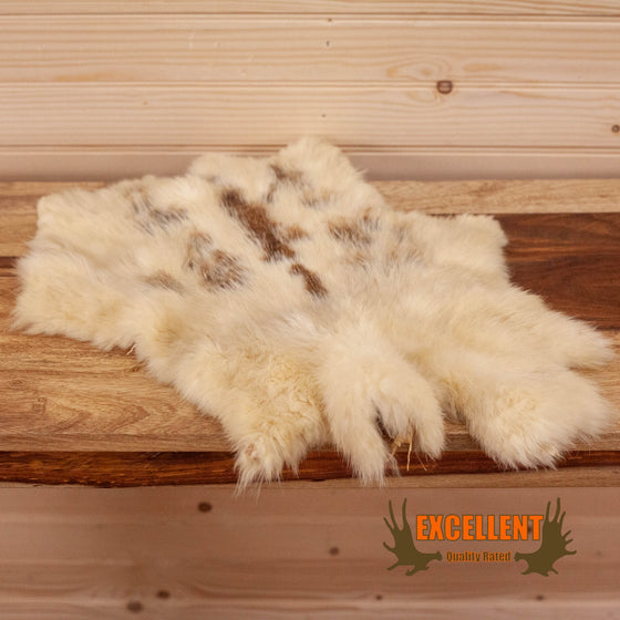 snowshoe hare pelt for sale