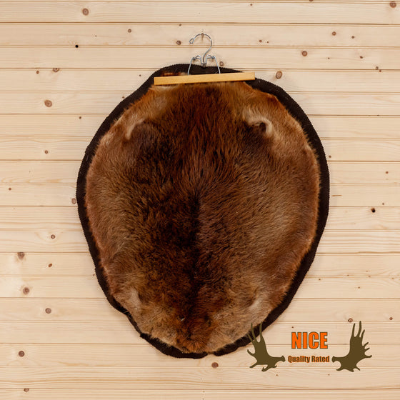 full body beaver pelt for sale