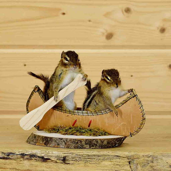 Chipmunks in Canoe Taxidermy for Sale