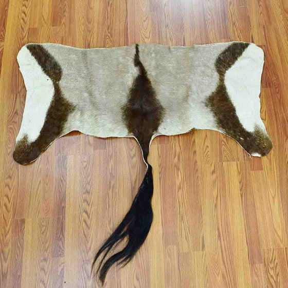 Gemsbok Back Skin for Sale