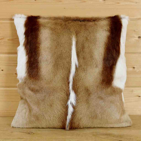 African Springbok hide pillow