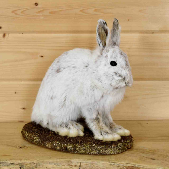 hare mount