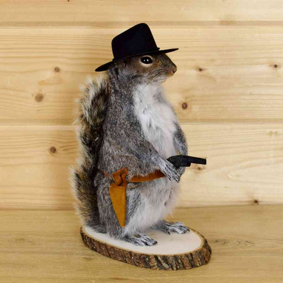 Real stuffed squirrel