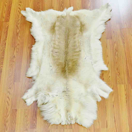 Caribou Skin Rug for Sale