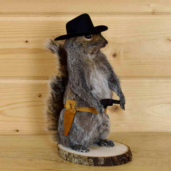 Squirrel Mount for Sale
