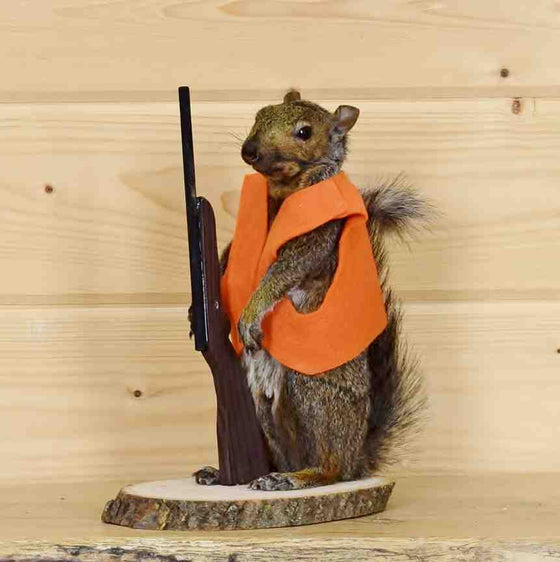 Hunting Squirrel Taxidermy Mounts