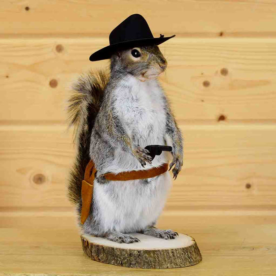 Cowboy Squirrel Novelty Taxidermy