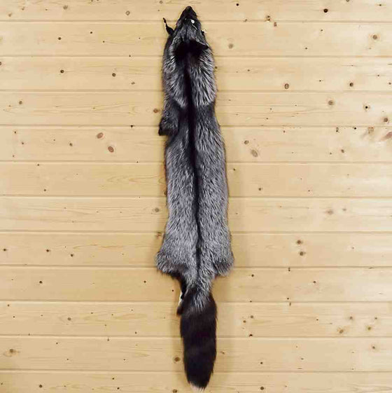 Fox skin for Sale