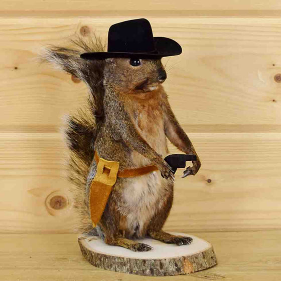 Cowboy Squirrel Taxidermy