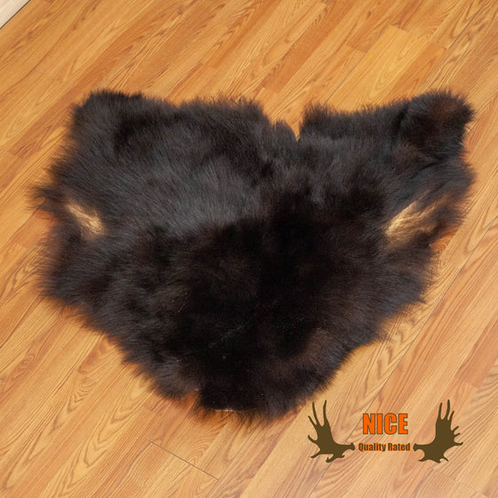 black bear hide for sale