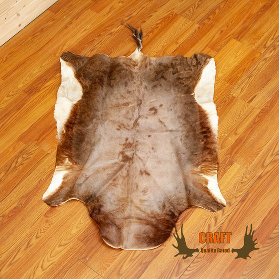 craft grade blesbok skin hide for sale