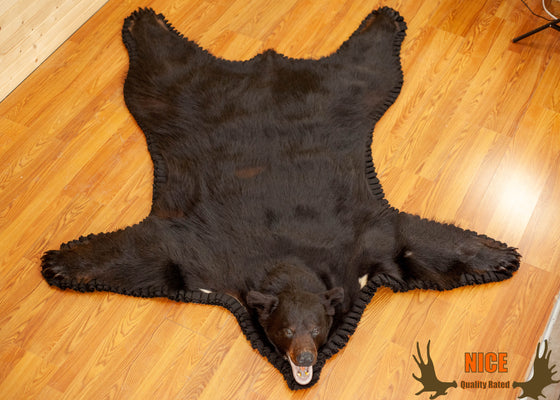 black bear rug for sale