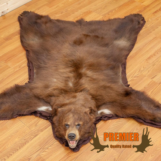 Cinnamon Phase Black Bear Rug for Sale - SW10004
