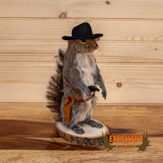 cowboy squirrel taxidermy gift novelty for sale