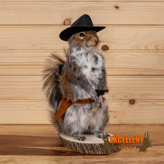 novelty cowboy squirrel full body taxidermy mount for sale