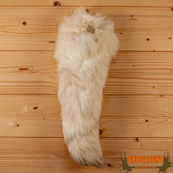 arctic fox tail for sale