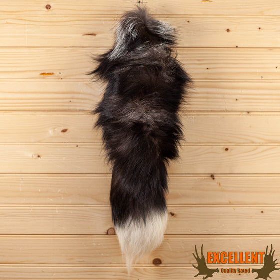 silver fox tail for sale