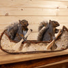 Pair of Squirrels Paddling a Birch Bark Canoe Taxidermy Mount SW10771