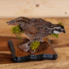 Excellent Perched Bobwhite Quail Taxidermy Mount SW10934