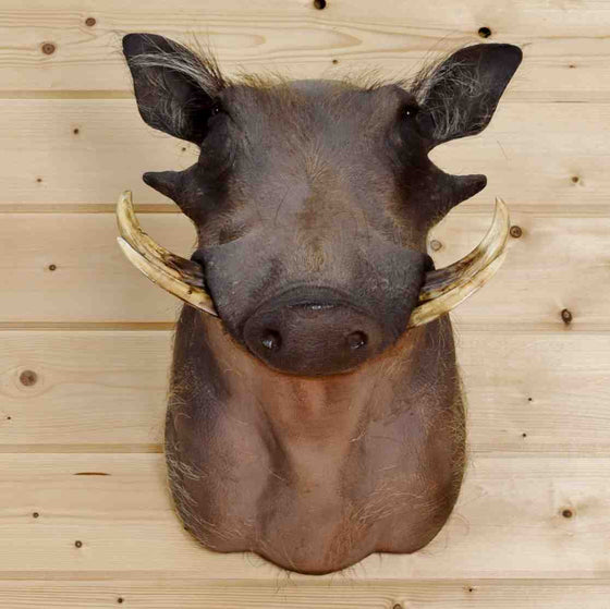 Warthog Mount for Sale