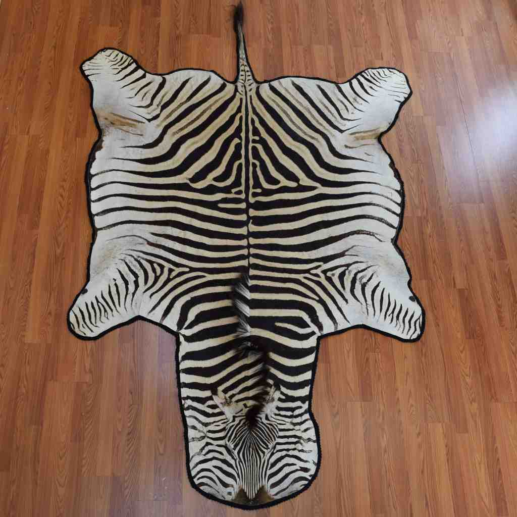 Zebra Skin Rug For Sale At Safariworks Taxidermy Sales