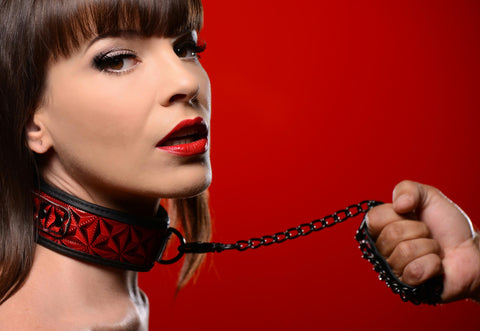 LoveCubby - Collars - Crimson Tied Collar with Leash by Master Series