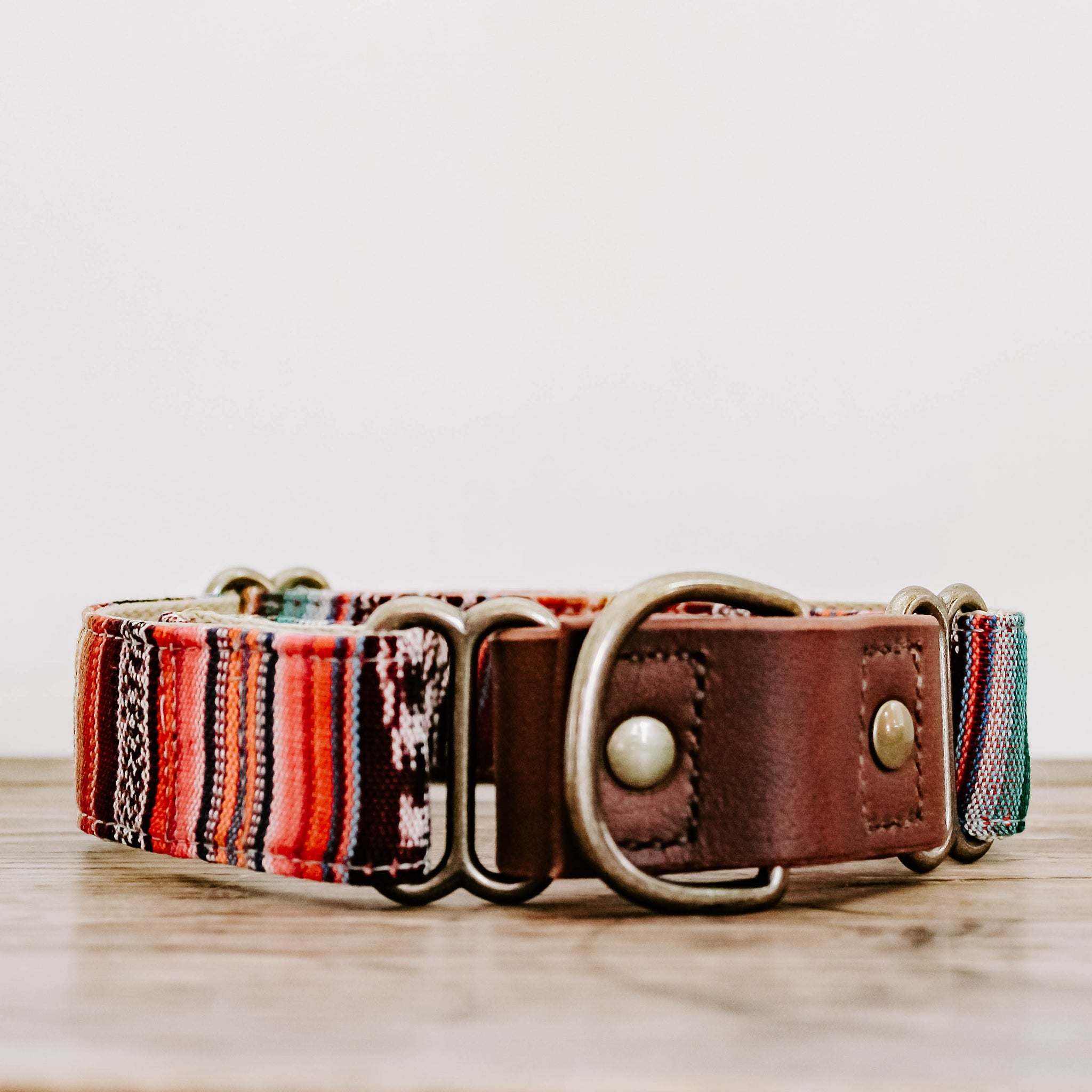 Leather Martingale Style Collar