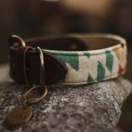 Leather Buckle Pendleton Collar