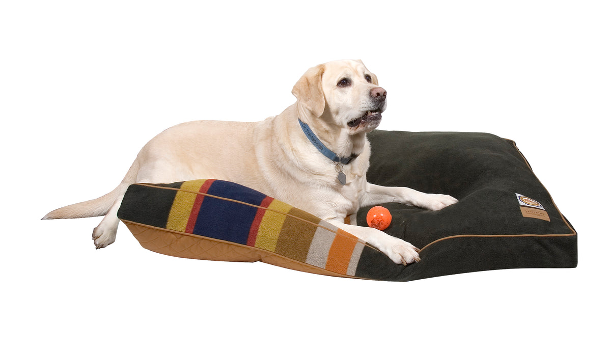 Badlands National Park Dog Bed