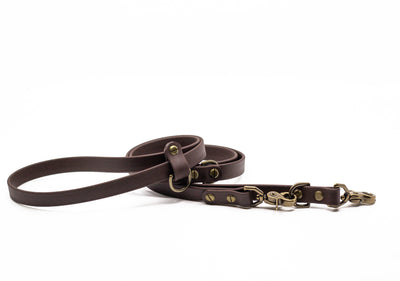 Olympic Multi-Use Dog Leash