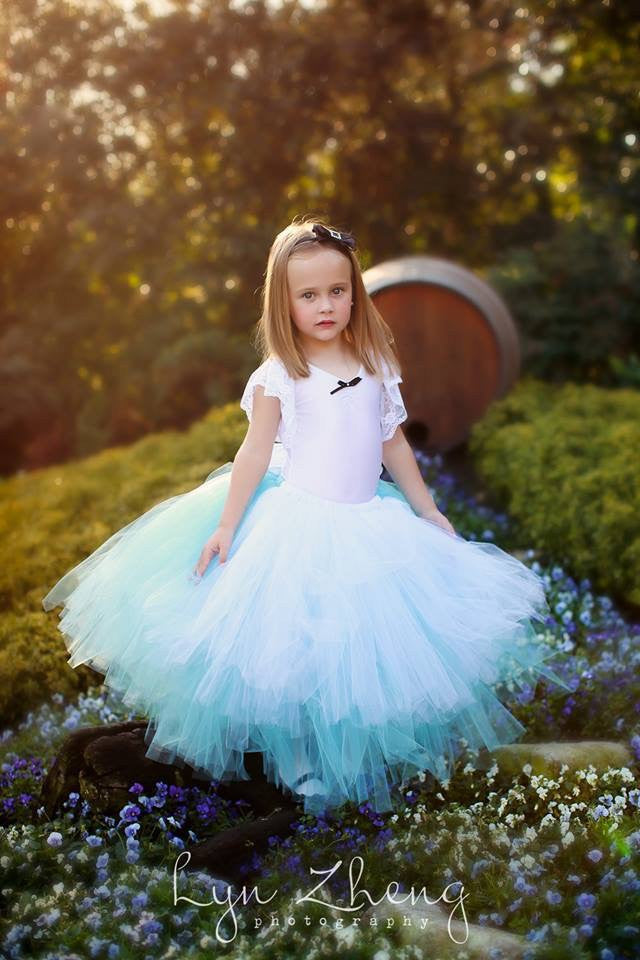 Alice Inspired Fairytale Outfit