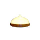 Euro Style Collection Aroma Essential Ultrasonic Oil Diffuser with LED Light-100 ML