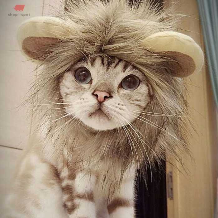 Cute Lion Mane Wig For Dog And Cat