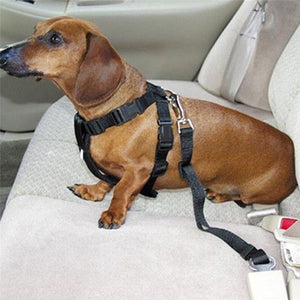 Adjustable Dog Restraint Car Seat Belt - 60% OFF!