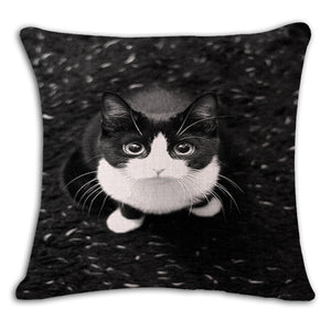 Cat Printed Throw Pillowcase