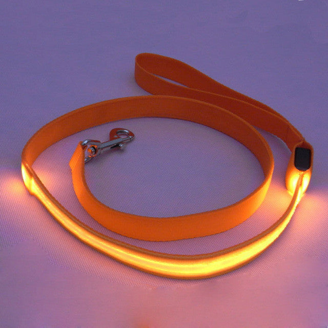 Dog Safety Leash with LED Glowing Lights