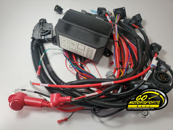 Wiring Harness for FZ09 | Legend Car - GO Motorsports Shop | Legend Car Parts Store