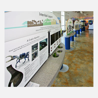 These interactive displays created for The Barrier Island Center in Brevard County, Florida, describes the different habitats of the barrier island.