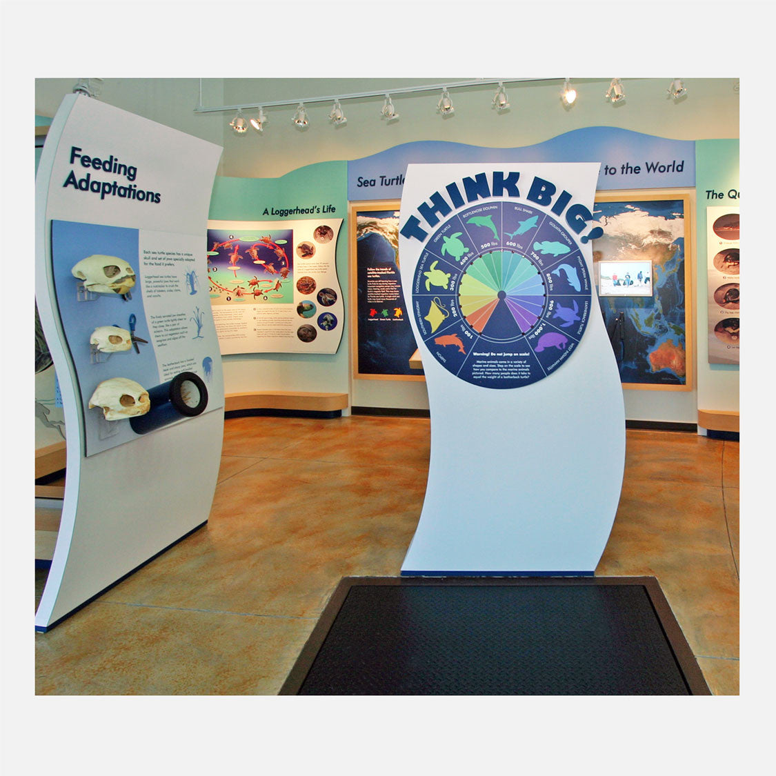 These interactive displays were created for The Barrier Island Center in Brevard County, Florida.