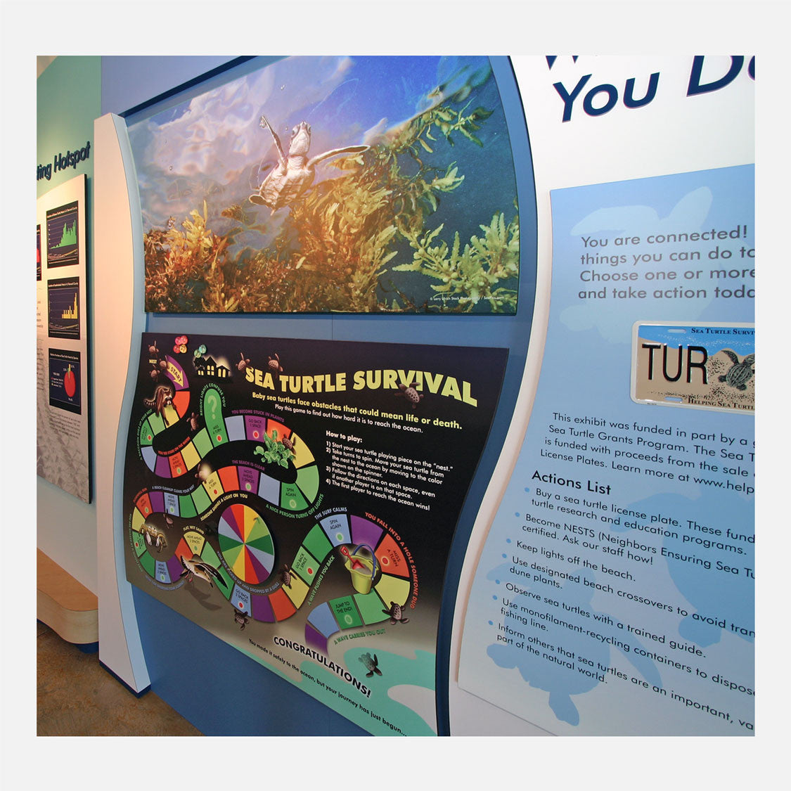 This interactive sea turtle game was created for The Barrier Island Center in Brevard County, Florida. The game describes the hazards a sea turtle hatchling must overcome before reaching the ocean.