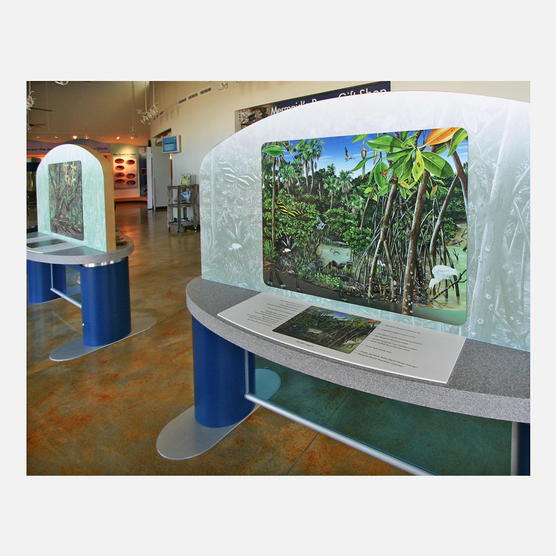 This beautifully illustrated display describes the flora and fauna of the intertidal habitat of an east coast Florida barrier island.