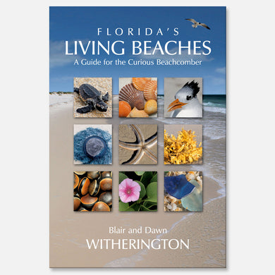 Florida's Living Beaches by Blair and Dawn Witherington
