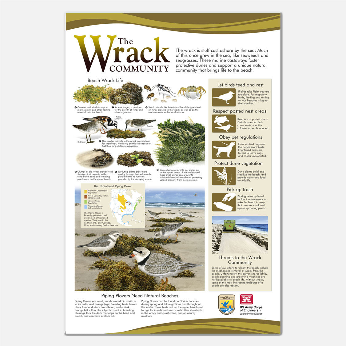 Beach wrack (seaweed) informational display