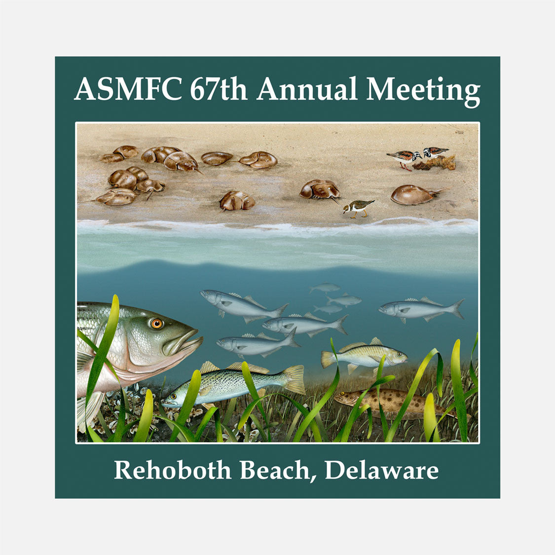 67th annual meeting of the Atlantic States Marine Fisheries Commission, Rehoboth Beach, Delaware, 2008. The logo is a split image of several Delaware marine species.