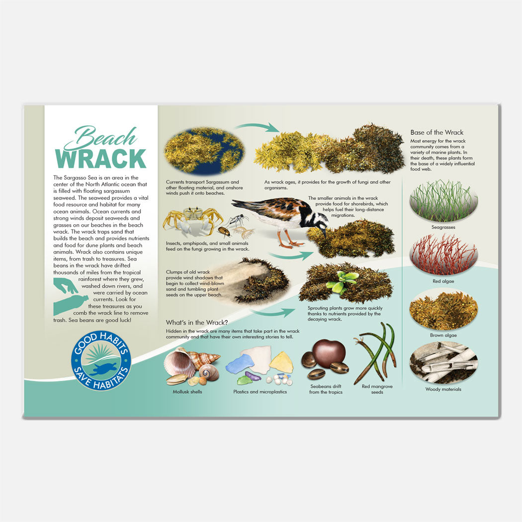 This beautiful wrack community deck signage was created for The Barrier Island Center, an environmental education facility located in Brevard County, Florida.